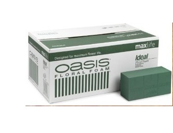 A Oasis Ideal Maxlife