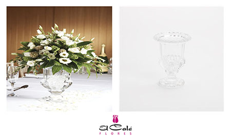 Oasis Glass  Urn Clear 14,5x11,3cm